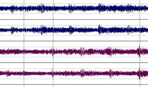 SOUND FORGE Pro 12: Audio-Mastering-Legende kehrt zurück