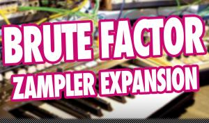 Video-Demo: Zampler Brute Factor Expansion im Praxischeck