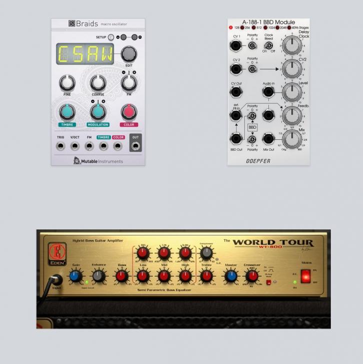 Eden WT-800 Bass Amp, Mutable Instruments Braids und Doepfer BBD