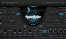 Output REV X-Loops - Reverse-Maschine