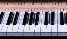 Native Instruments NOIRE - Piano von Nils Frahm