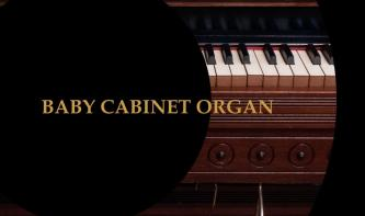 Precisionsound Baby Cabinet Organ