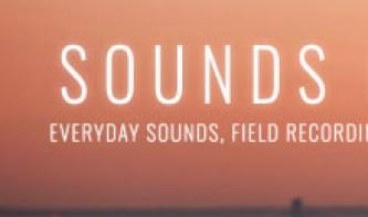 Sounds of Life: Kostenloses Sample-Instrument mit Fieldrecordings im Kurztest